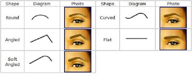 الحاجب-الشكل-الرسم البياني