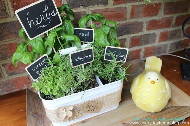 Gereçler-Caddy-Herb-Garden