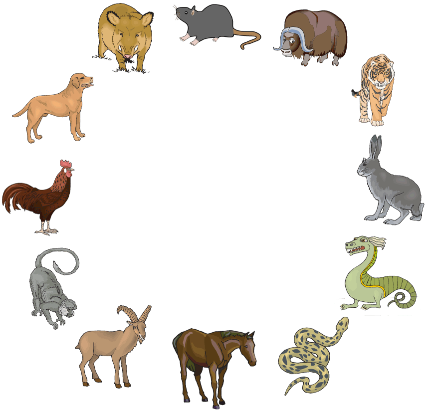 The Twelve Chinese Zodiac Animals