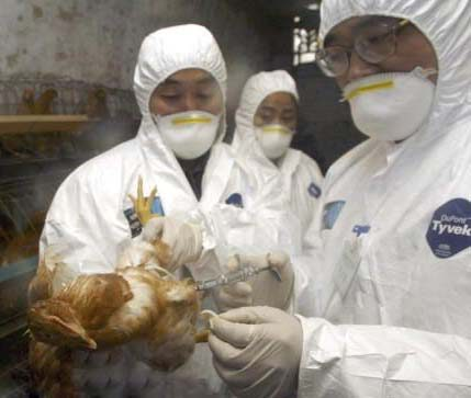 Central China confirms new human bird flu case. Taken from http://www.topnews.in/health/regions/china?page=2