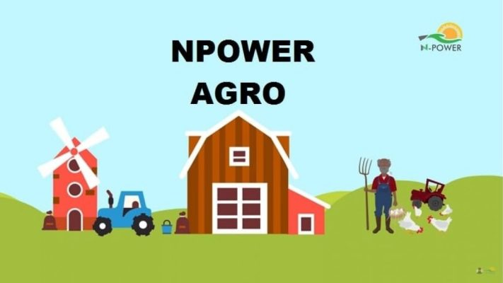Who can apply for Npower Agro
