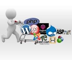 img_web_development