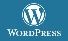 шаблон WordPress
