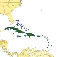 TOPOSIM_NorthAmerica_Caribbean_cov_612x612