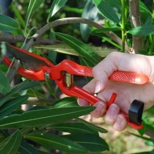 How To Organize Your Outdoor Storage Shed - Professional Pruning Shears