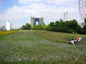 Spring time in Odaiba