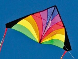 Into The Wind Rainbow Kid's Delta Kite