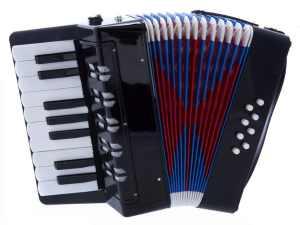 D'Luca G104-BK Kids Piano Accordion 17 Keys 8 Bass, Black