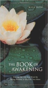 The Book of Awakening Having the Life You Want by Being Present to the Life You Have
