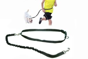 Rugged Hands Free Jogging Dog Leash; Bungee Running Dog Leash with Reflective Strip