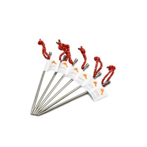 TOAKS Titanium Nail Tent Stakes (Pack of 6)
