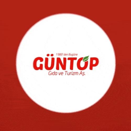 Güntop