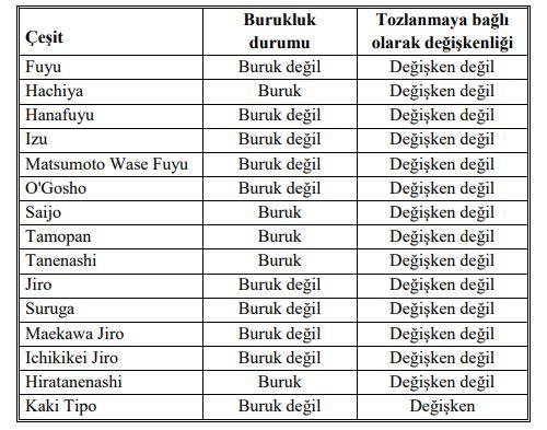 Trabzon hurması çeşitleri