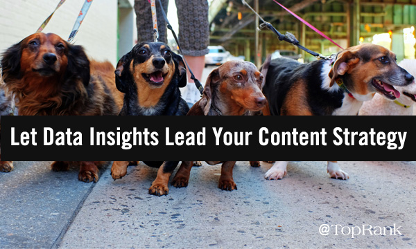 Let Data Insights Lead Your Content Marketing Strategy
