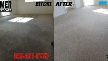 Upholstery Cleaning In Doral 305 631 5757 Sofa Cleaning Experts