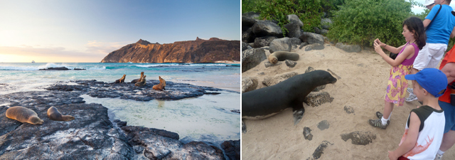 Galapagos national park pic