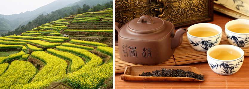 top ten tea exporters countries in the world