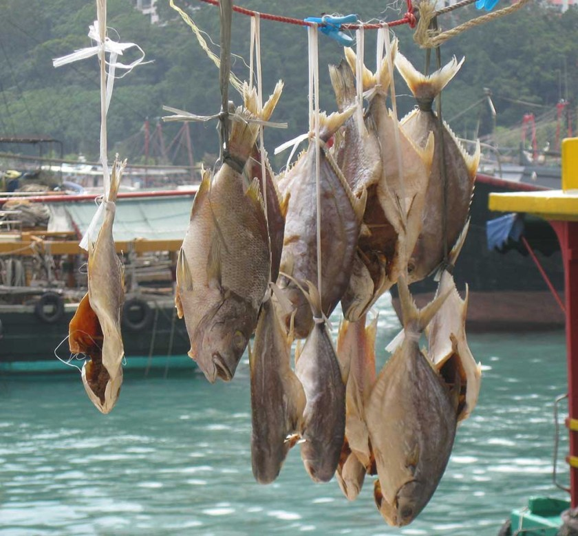Top 10 Best Fish Markets in the World