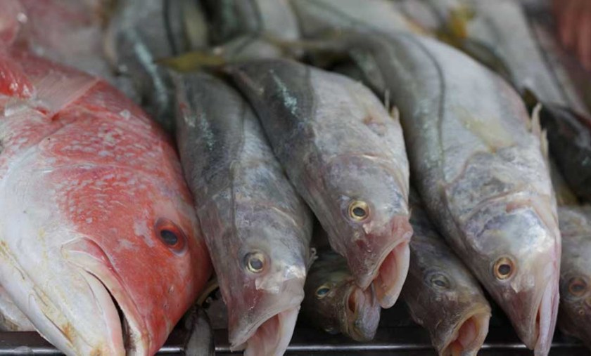 Top Three Fish Markets in the World