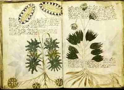 The Voynich Manuscript