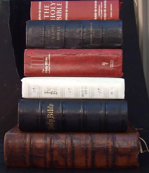 bibles-newton