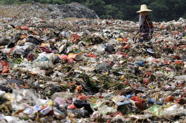 A garbage collector looks for recyclable waste at a garbage dump site in Nanchang