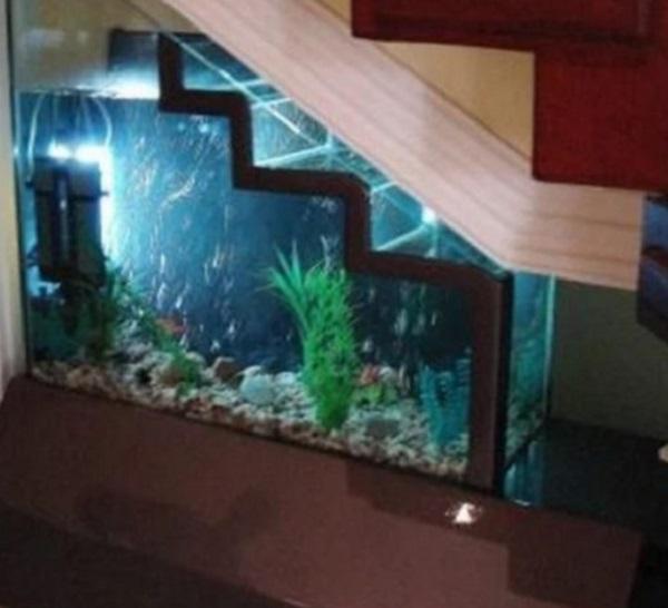 Aquarium Under Staircase