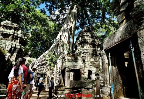 Ta Prohm@SiemReap20150701_084