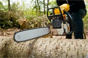 About Top Tree Service Newark