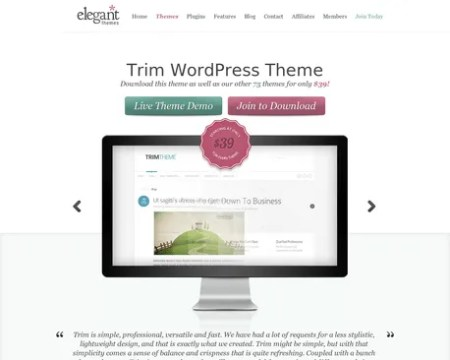 Download Trim WordPress Theme - Responsive and Clean - Call to action