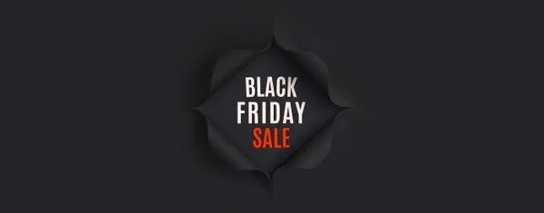 Best 5 Black Friday Deals For Web Designers and Developers -