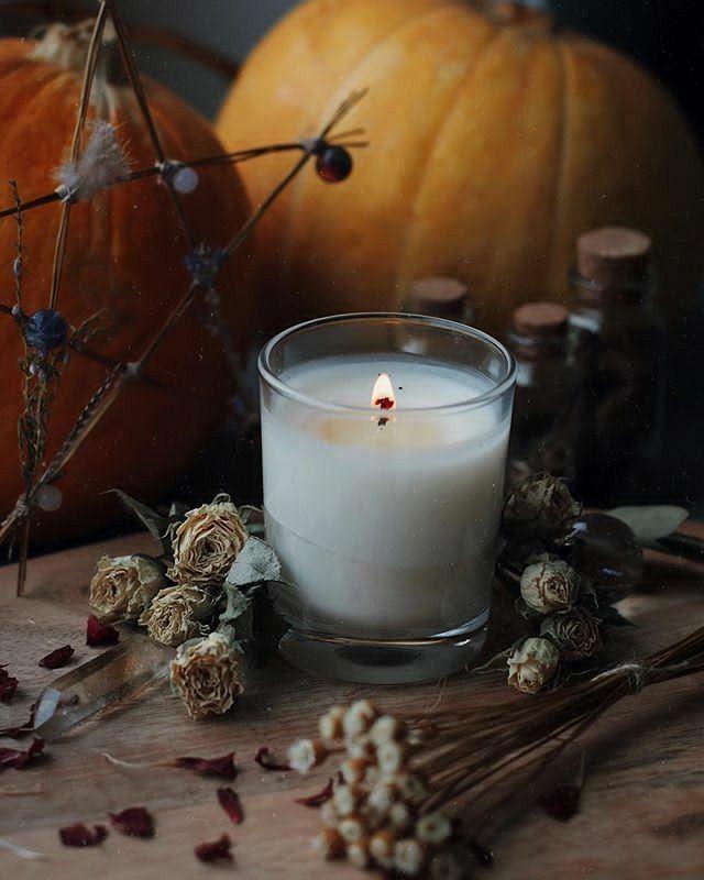 Helloween Special: FAQ Regarding Burial Insurance - Culture