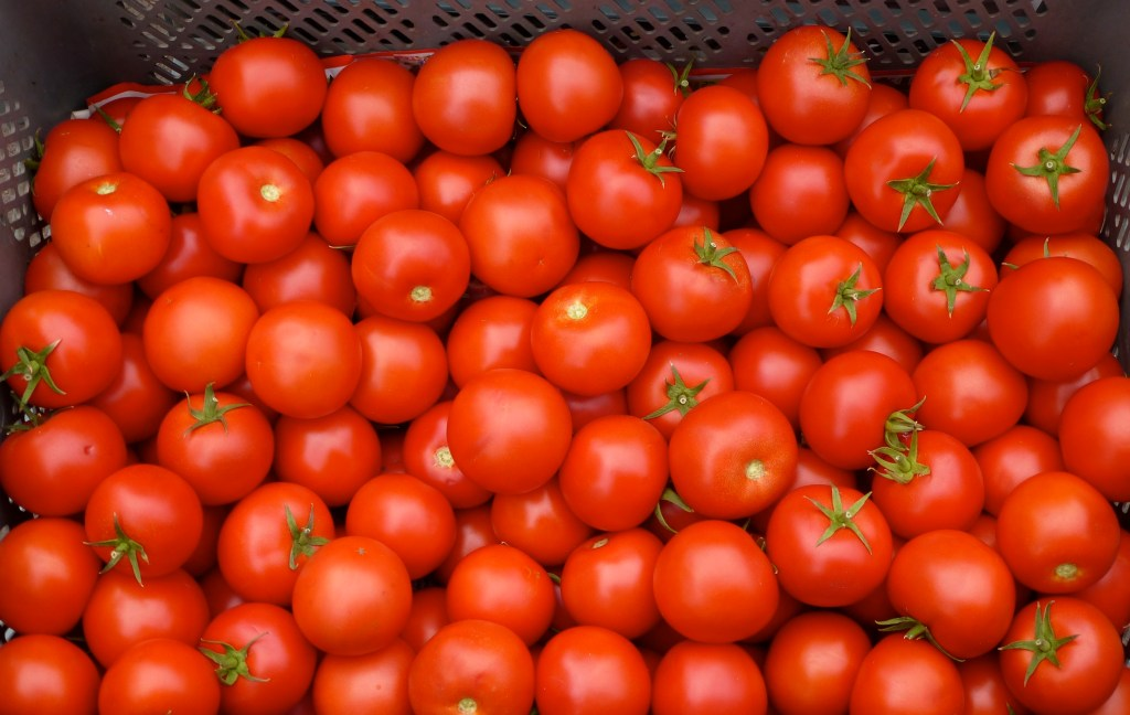 tomatoes-for-acne-scars