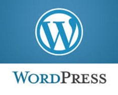 How To Make Proper Use Of Wordpress To Get Out Of Business Crisis