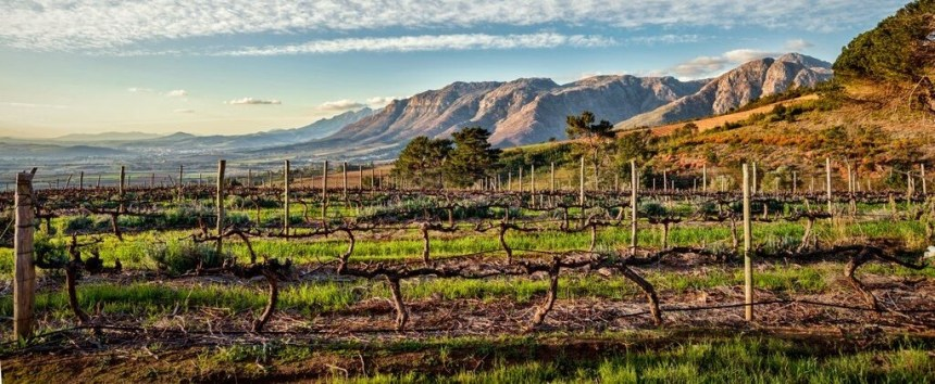 Uva Mira, view of Stellenbosch (cropped)