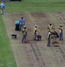 Tapete: gramado do Mário Helênio passa por revitalização
