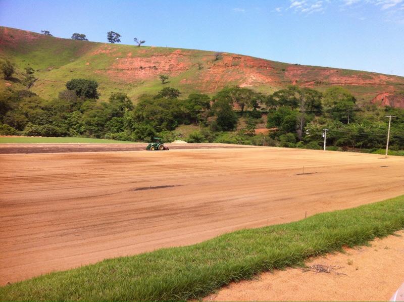 Três campos estão sendo plantados em Tombos (Foto: Divulgação)