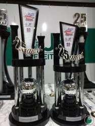 Troféus de campeão e vice-campeão adulto