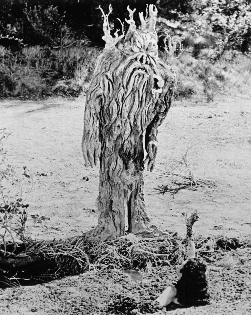 Dan Milner, director, From Hell It Came, 1957, motion picture, Allied Artists.  The Tabanga as it was realized by the Don Post Studios of Hollywood.  A comparison of this image with the Blaisdell artwork strongly suggests that the sketches were used as a guide for the construction of the costume. Click to enlarge.