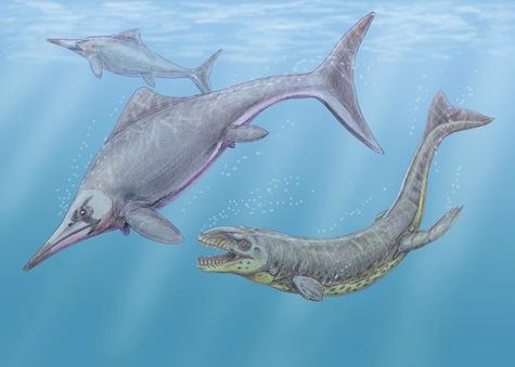 Caypullisaurus Dakosaurus