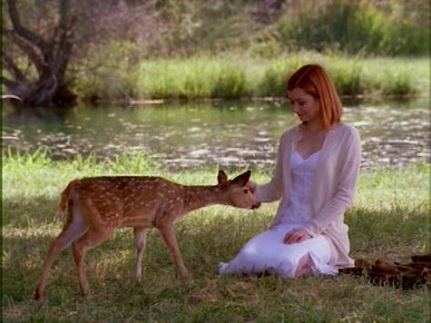 Buffy the Vampire Slayer, Bargaining, Willow