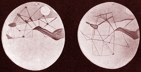 Percival Lowell's illustration of the canals of Mars