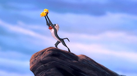 The Lion King, Rafiki, Simba