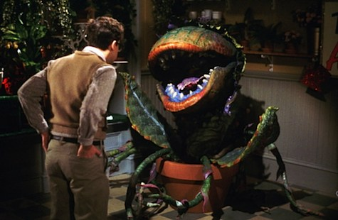 SFF Musicals, Little shop of horrors audrey II seymour