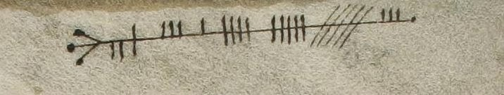 medieval scribe hangover gloss manuscript