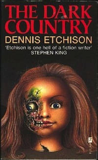 Will Etchison The Dark Country UK cover