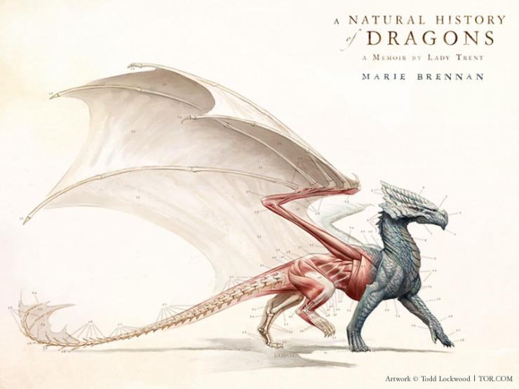 Todd Lockwood cover Natural History of Dragons Marie Brennan