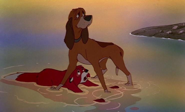 foxhound8