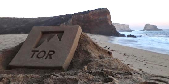 Bill Lewis Tor Books sand sculpture