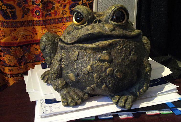 czerneda-toad1